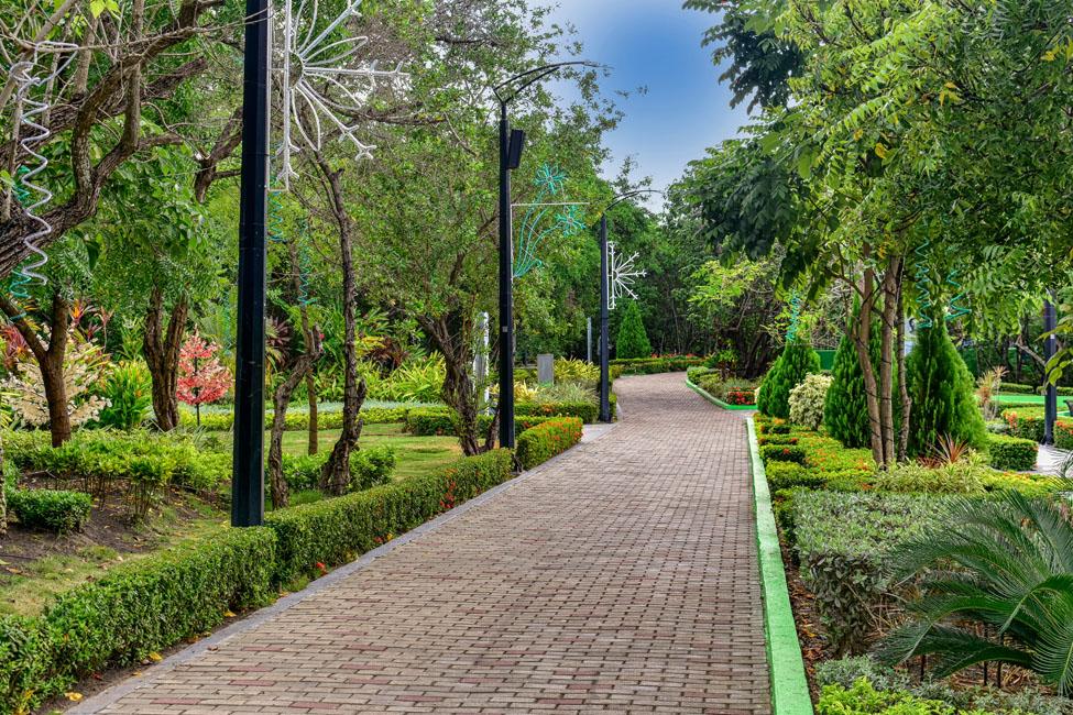 Parque El Espiritu Del Manglar
