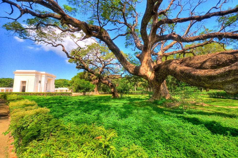 Botanical Gardens